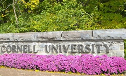 Cornell Business School Email Scandal: Employees Having Affair Accidentally BCC Entire School