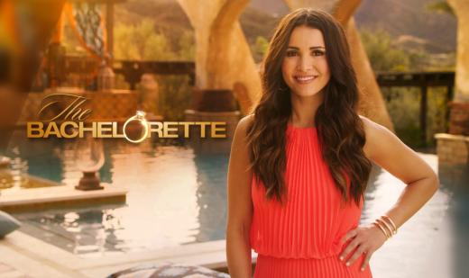 The Bachelorette Starring Andi Dorfman