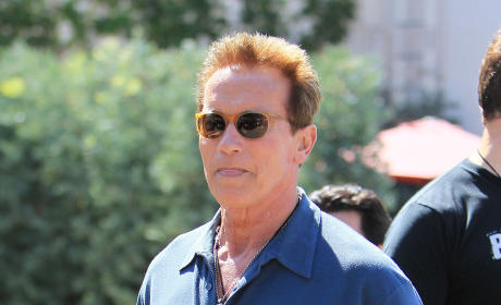 Arnold Schwarzenegger Film Projects: Terminated!