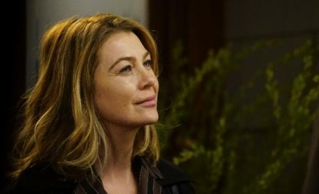 Watch Grey's Anatomy Online: Check Out Season 12 Episode 16!