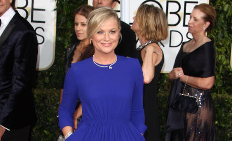 Amy Poehler at the Golden Globe Awards