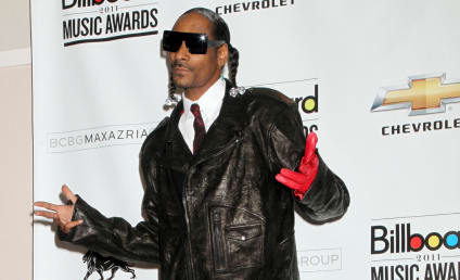 Snoop Dogg Arrested on Gun, Drug Possession