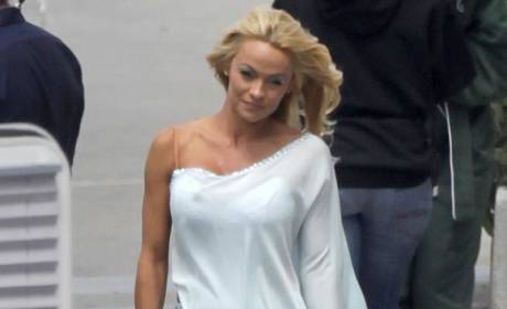 Pamela Anderson Gets Low Scores ... From California Tax Board