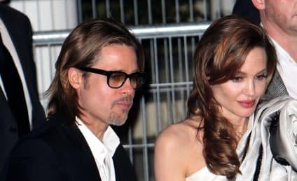 Brad Pitt And Angelina Jolie: Will They Last?