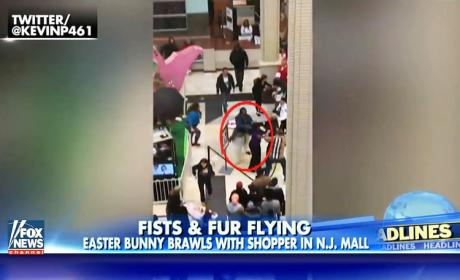 Easter Bunny Gets Into Fight with Mall Patron... For Real!