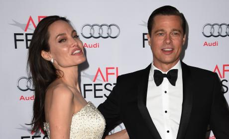 Brad Pitt and Angelina Jolie Divorce: How Much is at Stake?