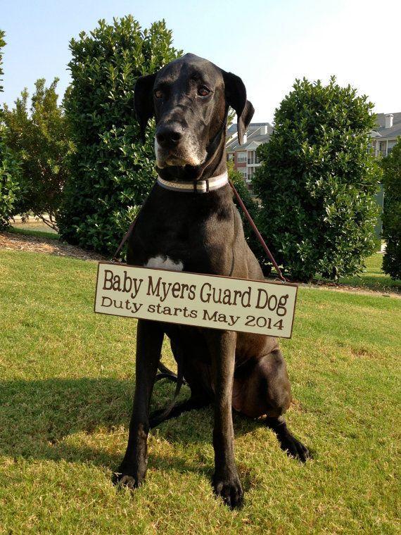 Baby Guard Dog