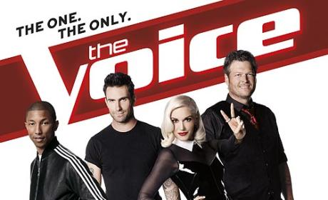 Who should win The Voice Season 7?