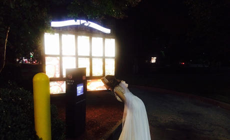 Drunk Bride Orders Taco Bell in Wedding Dress, Is Our Hero