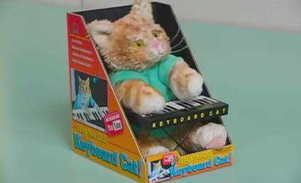 Keyboard Cat: Now in Cute, Musical, Toy Form!
