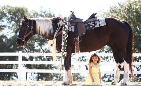 Sophia Abraham Poses Under a Horse