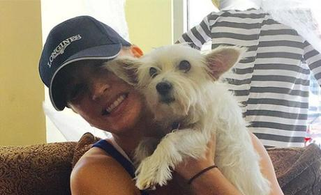 Kaley Cuoco Adopts Dog, Continues Post-Divorce Pet Collecting