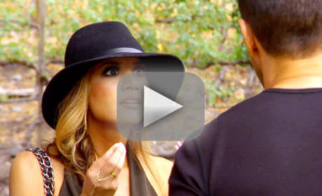 Shahs of Sunset Season 4 Episode 11 Recap: A Tale of Two Parties