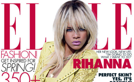"Chris Brown Assault on Rihanna Described in Detail; Star Had Prior Domestic ""Incidents"""