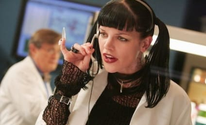 Coyote Shivers, Pauley Perrette Ex-Husband, Says NCIS Star of Framed Him, Boned Pizza Guy