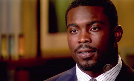 Michael Vick Faces More Charges, Becomes Chew Toy