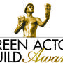 SAG Awards 2016: Who Won Big?