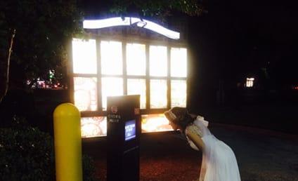 Drunk Bride Orders Taco Bell in Wedding Dress, Is Our Hero