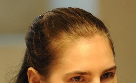 Raffaele Sollecito, Amanda Knox to Reunite?