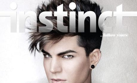 "Adam Lambert Questions ""Catty"" Members of the Gay Community"