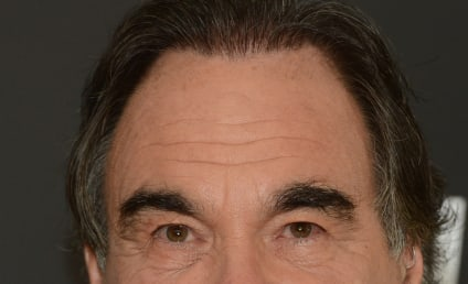 "Oliver Stone Labels Hurricane Sandy ""Punishment"" for Climate Change Ignorance"