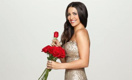 Andi Dorfman as The Bachelorette: Guys Heart Her!