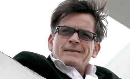Charlie Sheen: Going Back to Work