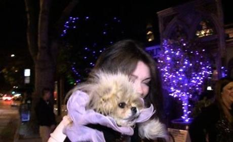 Lisa Vanderpump, Dog Scoff at Verdict