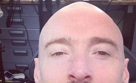 Hugh Jackman: Bald for Blackbeard!
