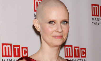 """Cynthia Nixon Amends Statements on Homosexuality, Classifies Self as """"Bisexual"""""""