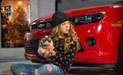Grumpy Cat Movie: First Look!