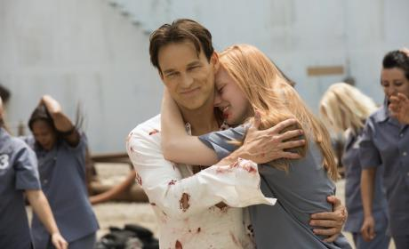 Should HBO end True Blood after Season 7?