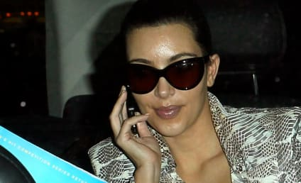 "Kim Kardashian Laments Removal of Luggage Items, Loss of TSA ""Trust"""
