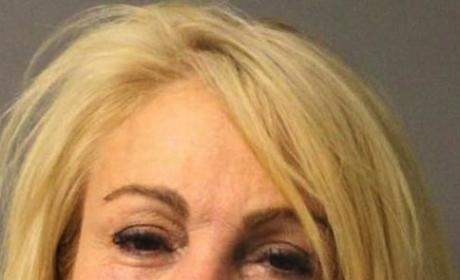 Dina Lohan Pleads Guilty to DWI, Speeding; Family Trifecta Complete!