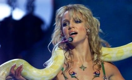 13 Bat$hit Craziest Things Britney Spears Has Ever Done