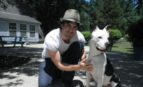 How much would you pay to have lunch with Ian Somerhalder?