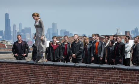 Divergent Photo: Shailene Woodley on a Ledge
