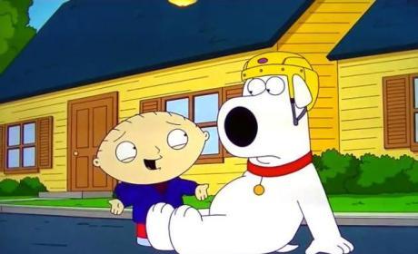 Watch Family Guy Online: Season 12 Episode 8