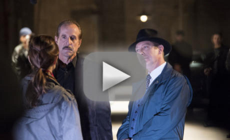 The Blacklist Season 2 Episode 8 Recap: Moving On