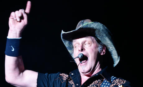 Ted Nugent on Cecil: Lions Are a Renewable Resource! God You People Are Stupid!