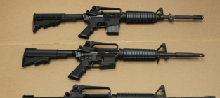 Assault Weapons Ban 2013: Introduced, Prospects Uncertain