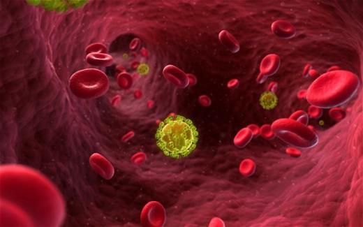 Viruses, Cells