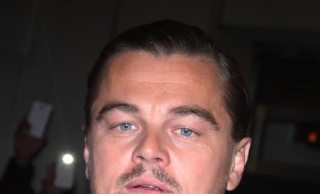 Leonardo DiCaprio Vapes & Listens to Headphones During Sex, Former Partner Claims