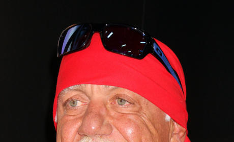 Happy Hulk Hogan