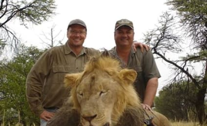 Walter Palmer Admits to Killing Cecil the Lion, Incurs Wrath of Internet