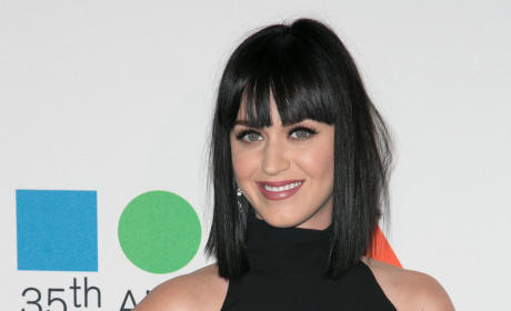 Katy Perry and DJ Diplo: Dating?