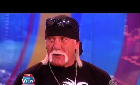 Hulk Hogan Isn't Racist, Just Stupid