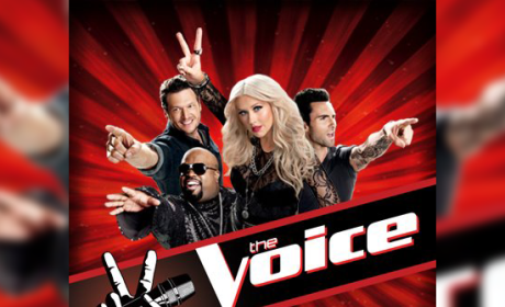 The Voice Judges: Returning For Season 3 ... This Fall!