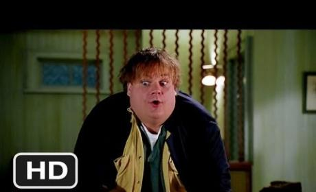 7 Hilarious Tommy Boy Quotes