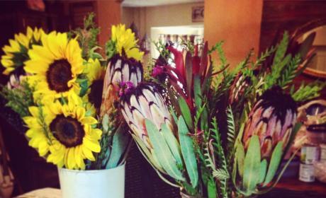 Chelsea Houska flowers